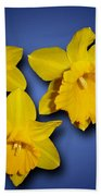 Daffodil Trio Beach Towel