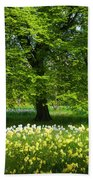 Daffodils And Narcissus Under Tree Beach Towel