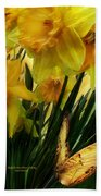 Daffodils - First Flower Of Spring Beach Towel