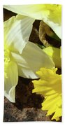 Daffodils Flower Bouquet Rustic Rock Art Daffodil Flowers Artwork Spring Floral Art Beach Towel