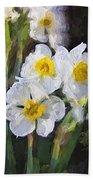 Daffodils In My Garden Beach Towel