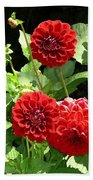 Dahlia 1 Beach Towel
