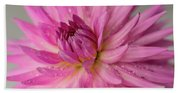 Dahlia After The Rain Beach Towel