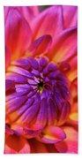 Dahlia Flower 017 Beach Towel