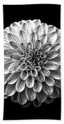 Dahlia  Flower Black And White Square Beach Towel