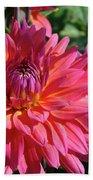 Dahlia Flowers Garden Art Prints Baslee Troutman Beach Towel