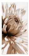 Dahlia Sepial Flower Beach Towel