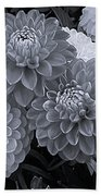 Dahlias Multi Bw Beach Towel
