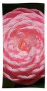 Dainty Pink Camellia Beach Towel