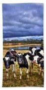 Dairy Heifer Groupies Future Chick-fil-a Starrs Beach Sheet
