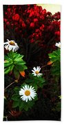 Daisies At The Boathouse Beach Towel