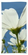 Daisies Floral Art Prints Canvas Daisy Flowers Blue Skies Beach Towel