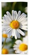 Daisies Flowers Field Blurriness 107162 2048x2048 Beach Towel
