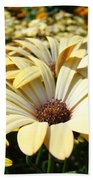 Daisies Flowers Landscape Art Prints Daisy Floral Baslee Troutman Beach Towel