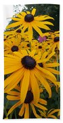Daisies From Niagara Beach Towel