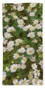 Daisies In Spring Beach Towel