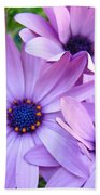 Daisies Lavender Purple Daisy Flowers Baslee Troutman Beach Towel