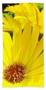 Daisies Summer Garden Art Print Yellow Daisy Baslee Beach Towel