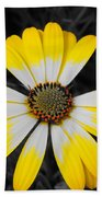 Daisy Crown Beach Towel