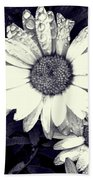 Daisy In Black And White  Beach Towel