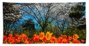 Dallas Arboretum Tulips And Cherries Beach Towel