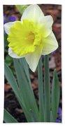 Dallas Daffodils 71 Beach Towel