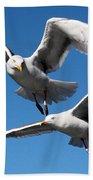 Aerial Dance Of The Seagulls Beach Towel