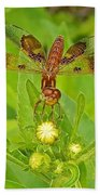Dancing Dragonfly Beach Towel