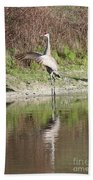 Dancing On The Pond Beach Towel