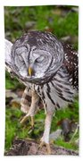 Dancing Owl Beach Towel
