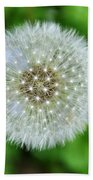 Dandelion 2 Beach Towel
