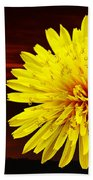 Dandelion Against Sunset With Inspirational Text Beach Towel