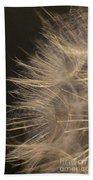 Dandelion Eighty Beach Towel