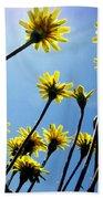 Dandelion Forest Beach Towel