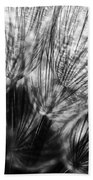 Dandelion Seeds I Beach Towel