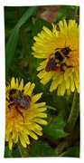 Dandelions And Bees Beach Towel