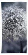 Dandilion Beach Towel