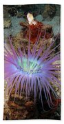 Dangerous Underwater Flower Beach Towel