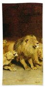 Daniel In The Lions Den Beach Towel by Briton Riviere