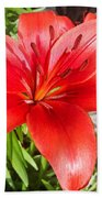 Dark Orange Red Lily Beach Towel