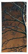 Dark Woods II Beach Towel