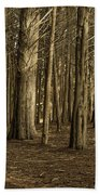 Dark Woods Beach Towel