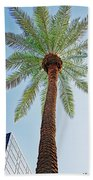 Date Palm In The City Beach Towel