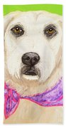 Date With Paint Feb 19 Sally Beach Towel