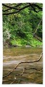 Davidson River Beach Towel