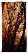 Dawn In The Trees Beach Towel