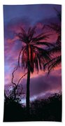 Dawn Palm 03 Beach Towel