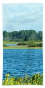 Day At The Wetlands Beach Towel