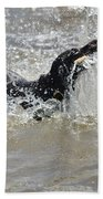Day On The River Beach Towel
