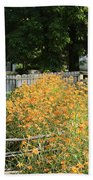 Daylilies In The Spring Beach Towel
